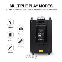 12 3000W Rechargeable Portable Bluetooth Party Speaker Heavy Bass Karaoke MIC