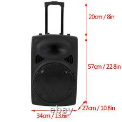 12 inch Wirelessly Portable Party Bluetooth Speaker With Microphone & Remote