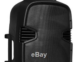 12 Haut-parleurs Portables Bluetooth Pa Party Dj Karaoké MIC Batterie Usb Sd Fm Aux