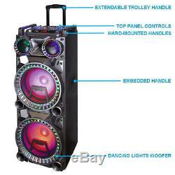 Befree Dual 10 Pouces Subwoofer Bluetooth Partie Haut-parleur Portable + Télécommande + 2 MIC