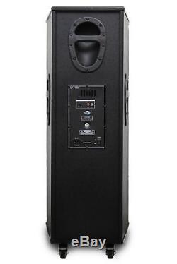 Dolphin Sp-213bt Haut-parleur De Fête Professionnel Bluetooth Double Avec Lumières 2600w