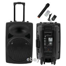 Haut-parleur Bluetooth De 12 Pouces Sans Fil Avec Microphone Et Télécommande