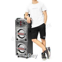 Haut-parleur De Sonorisation Amplifié Actif Sans Fil Bluetooth Dj Party Système Karaoké Radio Fm
