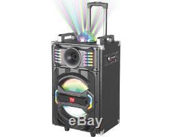 Le Meilleur Haut-parleur Portatif De Pa De Bluetooth De Karaoke Extérieur De Partie De Pro 10 Rechargeable