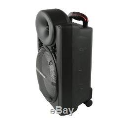 Pro 12 Hifi Dj Système De Sonorisation Haut-parleur Bluetooth 2 Microphones Sans Fil Soirée Karaoké
